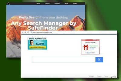 Any Search Manager によりハイジャックされたウェブ・ブラウザの例