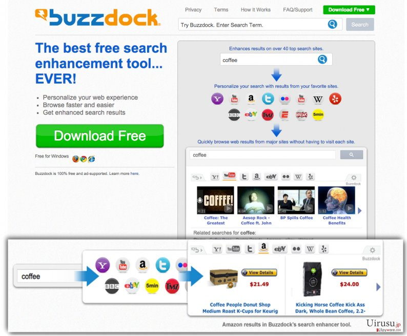 The picture showing Buzzdock PUP website