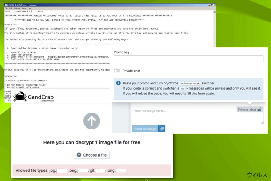 Gandcrab 5.1 ransomwareのスクリーンキャプチャ