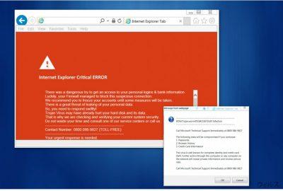 """Internet Explorer Critical ERROR"" ウィルス"