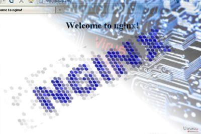 Nginx マルウェアを示す写真