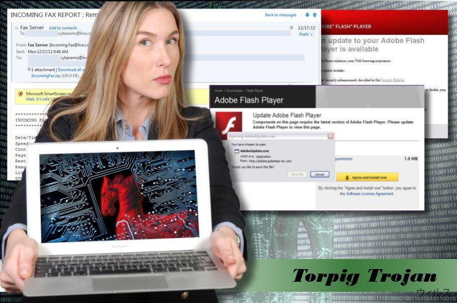 Torpig ウィルスの写真