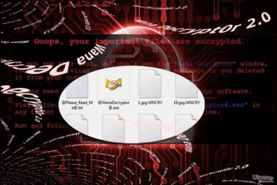 Wana Decrypt0r 2.0 を表したイメージ