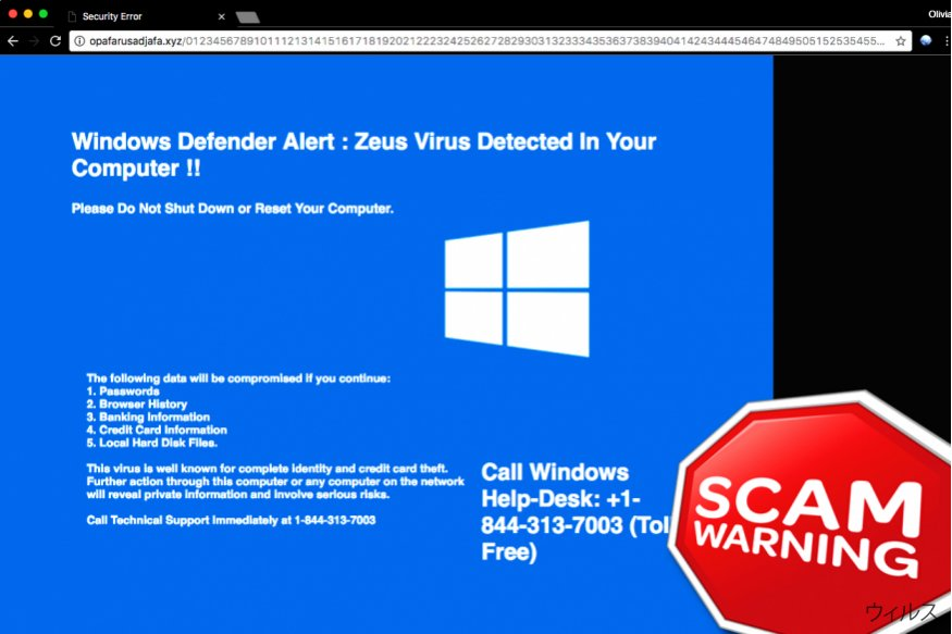 「Windows Defender Alert: Zeus ウィルス」Tech support scam