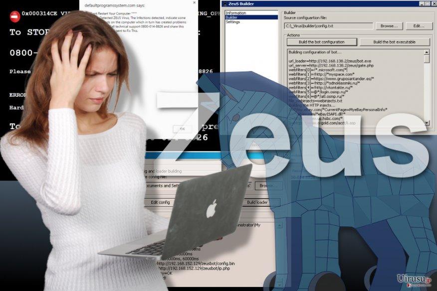 Zeus ウィルスのイメージ
